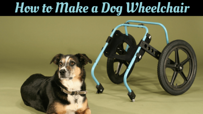 Dog Wheelchair Your Own Diy