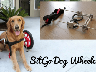 SiteGo Dog Wheelchair