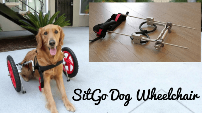 SiteGo-Dog-Wheelchair