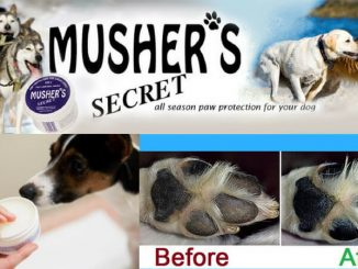 musher's secret reviews