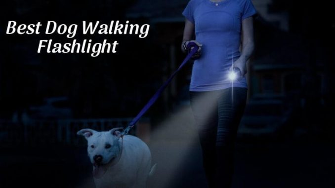Best Dog Walking Flashlight
